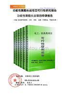 功能性聚酯长丝项目可行性研究报告(立项模板)
