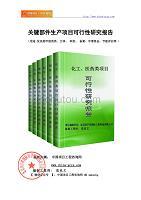 关键部件生产项目可行性研究报告(立项模板)