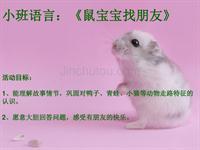 幼儿园小班语言活动课件《鼠宝宝找朋友》