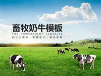 最专业的畜牧养殖类通用模板