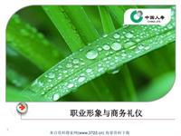 中国人寿保险公司职业形象与商务礼仪(PPT 38页)