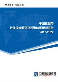 (目录)2017-2022年中国包银带行业深度调研及投资前景预测报告(目录)