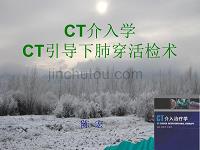 CT介入学及CT引导下肺穿活检术-陈宏-2010.4.20