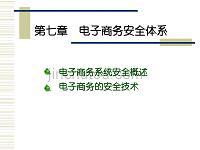 第七章电子商务安全体系