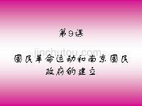 国民革命运动与南京国民政府的建立