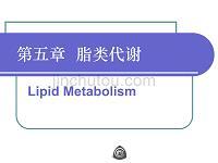 生物化学脂类代谢