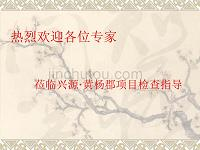 兴源黄杨郡优质结构汇报材料