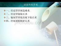 泌尿外科手术幻灯片